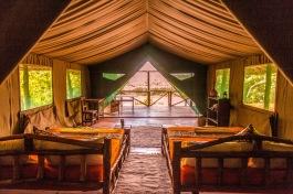 Full Tent INT 2